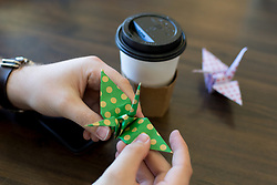 LEXINGTON, Ky., -- Cranes for a Cure is just one of the philanthropic initiatives that the owners of Magic Beans are involved in, Saturday, Sept. 30, 2017 at Cup of Commonwealth in LEXINGTON.