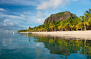 Late afternoon reflections of Le Morne Brabant and palm trees in the sea;  Le Morne Brabant Peninsula, south west Mauritius, The Indian Ocean