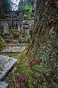 In the oldest part of Okunoin, tombs of samurai, priests, and common folk mix with age old trees.