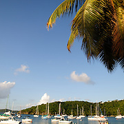 Cruz Bay Harbor on St. John in the US Virgin Islands