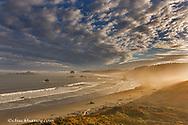 Sunrise fog greets the sea stacks and beaches of Cape Blanco State Park, Oregon, USA