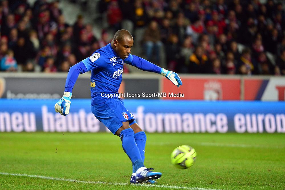 Vincent ENYEAMA  - 24.01.2015 - Lille / Monaco - 22eme journee de Ligue1<br />Photo : Dave Winter / Icon Sport