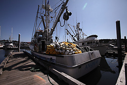 USA ALASKA KODIAK 27JUN12 - Fishing boats in Kodiak harbour, Alaska.....Photo by Jiri Rezac / Greenpeace