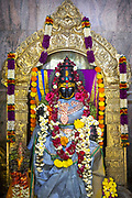 THIMMAMMA MARRIMANU, INDIA - 25th October 2019 - Statue of the goddess Thimmamma in the main shrine at Thimmamma Marrimanu banyan tree - the world's largest single tree canopy. Andhra Pradesh, India. <br /><br />It is common to find banyan trees in Indian Hindu temple courtyards, but the Thimmamma Marrimanu banyan tree is so large an entire temple sits at the centre of its canopy. A small shrine houses icons of Thimmamma and her husband. The main shrine (interior pictured) facing the samadhi houses a black stone icon of Thimmamma. The temple samadhi is believed to be the exact spot where Thimmamma threw herself onto the funeral pyre.