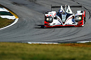 Lucas Luhr and Klaus Graf, Muscle Milk Pickett Racing (P1) Honda HDP ARX-03a, Petit Le Mans. Oct 18-20, 2012. © Jamey Price