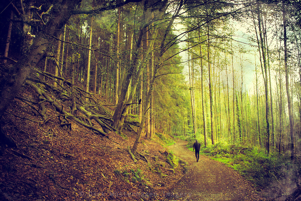 Man walking through a autumnly forest