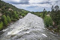 The Arkansas River during the spring runoff in the Upper Arkansas Valley near Buena Vista, Colorado.