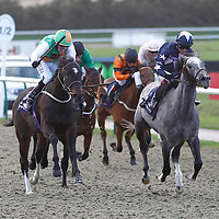 Lingfield 21st November