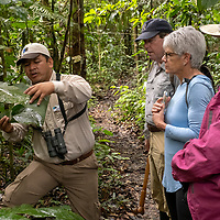 Naturalist Jairo Flores discusses the plant life of the Peruvian Amazon with guests during a walk through the tropical rainforest at Amazon Natural Park.
