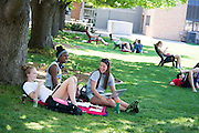 Students relax on the quad during finals week at Gonzaga.