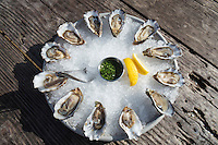 Dozen Raw Oysters From Hog Island Oyster Farm, Marshall, California