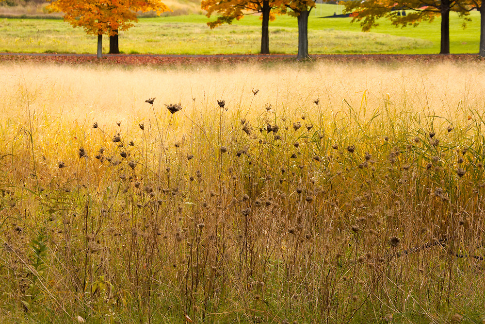 Storm King Art Center, near Beacon, New York