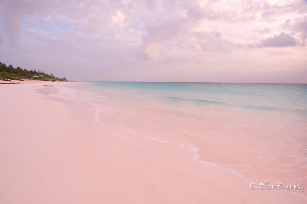 Pink Sands Beach, Harbour Island, The Bahamas