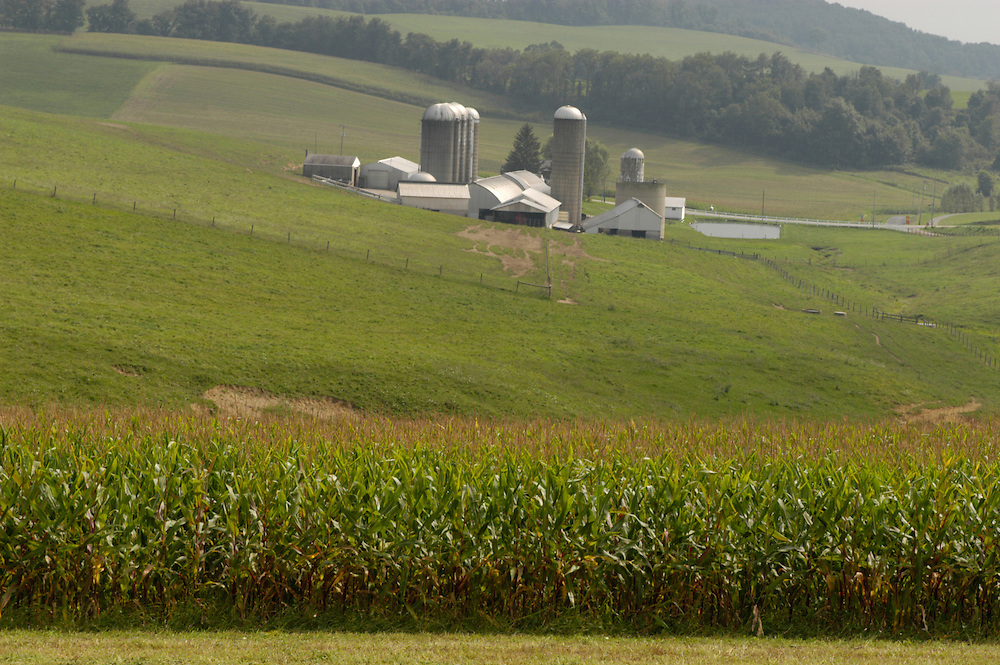 View of farm from field