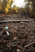 A heavy flow of discarded plastic bottles, tires, logs, and other debris about the length of a football field clogs the Santa Cruz River in the Sonoran Desert south ofTubac, Arizona, USA.  Debris lines and clogs the river in other areas of this riparian area as well.  The river, located in the foothills of the Santa Rita Mountains, runs seasonally with natural run off, but runs most of the year with reclaimed water.  The Juan Bautista de Anza National Historic Trail, a popular hiking trail run by the National Park Service, parallels the river in this area.  The wood plank once served as a foot bridge over the water.