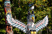Stanley Park. Seagull sitting on a totem pole.