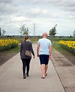 VIJFHUIZEN - Het Nationaal Monument MH17 in Vijfhuizen. Het monument ter nagedachtenis aan de slachtoffers van de vliegramp MH17 bestaat uit 298 bomen in de vorm van een lint, gekoppeld aan de namen van de slachtoffers. <br /> Nationaal Monument MH17 open voor publiek <br /> Het monument is een initiatief van de nabestaanden van de slachtoffers. Het bestaat uit een groen bomenlint en een gedenkteken. In het zogenaamde &lsquo;herinneringsbos&rsquo; krijgen alle 298 slachtoffers een eigen boom met een naamplaat. Het gedenkteken staat in het midden van het bos en heeft de vorm van een oog dat opkijkt. In de iris zijn de namen van de slachtoffers gegraveerd. Het bomenlint is uitgevoerd door landschapsarchitect Robbert de Koning. Het gedenkteken is gemaakt door kunstenaar Ronald A. Westerhuis. De Nationale Herdenking MH17 wordt bijgewoond door circa 2000 nabestaanden van de slachtoffers en vertegenwoordigers uit alle landen die betrokken waren bij de ramp met vlucht MH17.