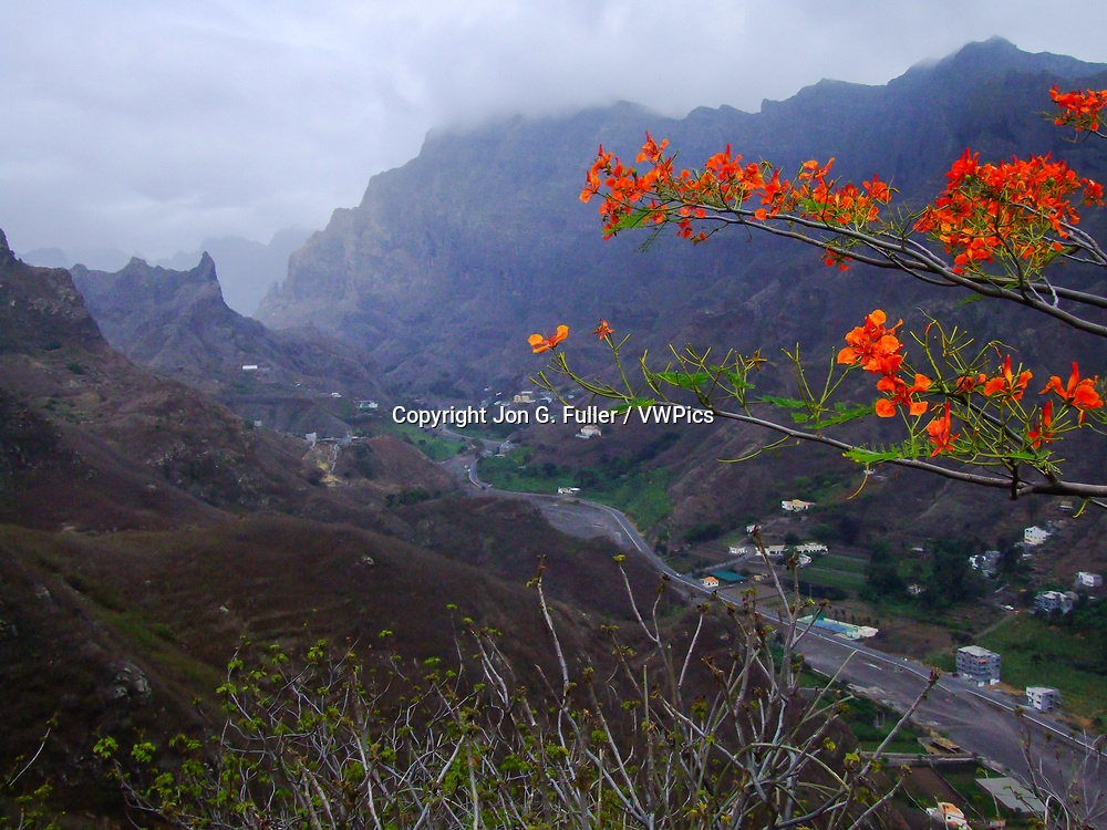Stormy weather over the mountains and valley of Ribeira Grande, Santo Antao, Republic of Cabo Verde, Africa, with Flame Tree blossoms in the foreground.