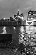 France. Paris. 4th district. Notre dame Cathedral view from The quai  d orleans along the seine river , on saint louis island, / Quai d orleans sur l ile saint Louis,
