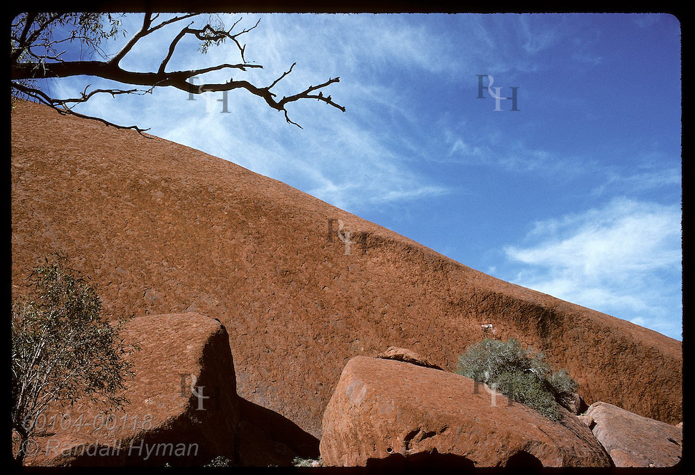 Tree limb & red sandstone slope of Ayers Rock contrast with blue sky and wispy clouds of summer. Australia