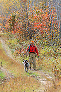 Dennis LaBare hunts ruffed grouse in northern Wisconsin with one of his young English Setters.