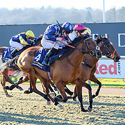 Lingfield 20th January