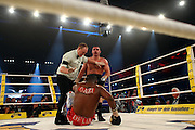 Ukrainian boxer Vitali Klitschko defeats challenger Juan Carlos Gomez of Cuba in their WBC heavyweight title fight on March 21, 2009 at the Hanns-Martin-Schleyer-Halle in Stuttgart, southern Germany.