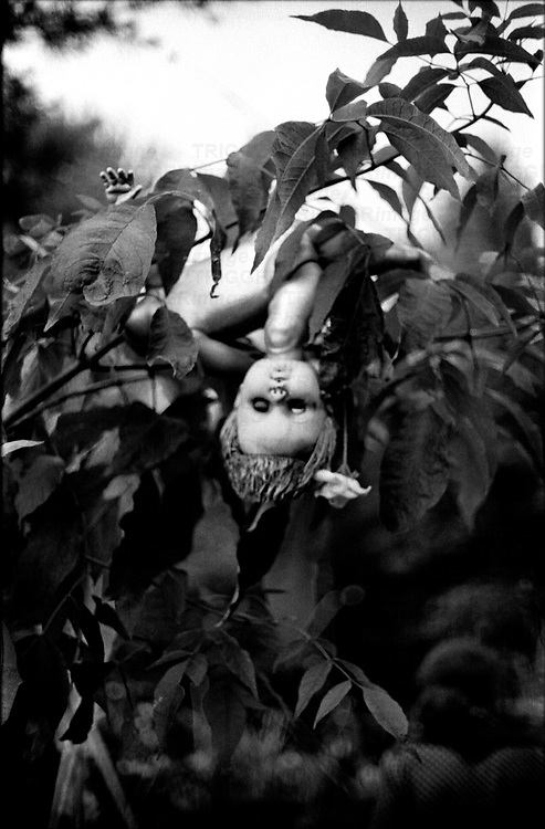 A doll hanging from a tree evokes the head-over-heels feeling of new love.