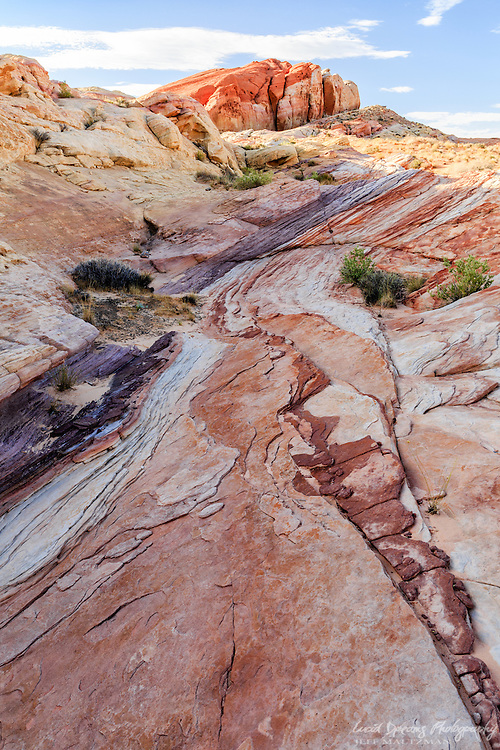 Patterns, textures, and color in sandstone at Valley of Fire State Park in Nevada