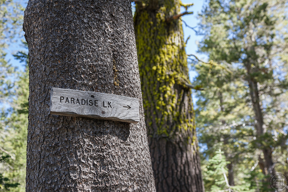 """Paradise Lake Trail Marker"" - Photograph of a old wood trail marker sign for Paradise Lake in the Tahoe National Forest."