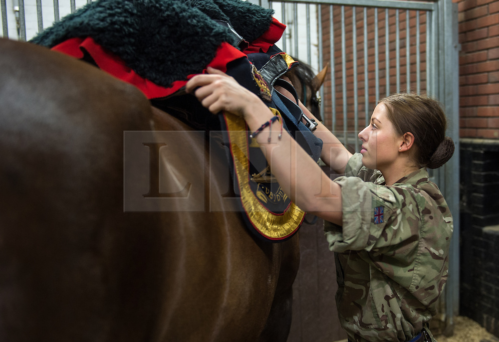 © London News Pictures. 14/07/2015.  One of the newest members of the Troop,Gunner Naomi Bickerdoak prepares the Officers Charger. . More usually associated with the ceremonial gun salutes and musical rides with their 13lb guns, they took on the role of both mounted and dismounted guard at the entrance of Horse Guards. This year, for the first time, they are using Knightsbridge Barracks, the home of the Household Cavalry Mounted Regiment, for the period of their duty, as opposed to Wellington Barracks, which they have used in previous years.  Photo credit: Sergeant Rupert Frere/LNP