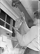 Special for DOMAS - Waterford Glass Factory.06/01/1953