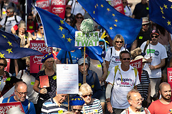 """© Licensed to London News Pictures . 21/09/2019. Brighton, UK. A mop head is used to depict Prime Minister Boris Johnson above a placard reading """" The Incredible Twat """" . Thousands attending a march organised by the People's Vote for a second EU referendum on Brexit pass through Brighton and along the Promenade during the first day of the 2019 Labour Party Conference from the Brighton Centre . Photo credit: Joel Goodman/LNP"""