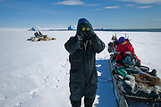 Seal hunter Emil Madsen stops to look for prey (polar bears, seals, musk ox, and geese) while the dogs take the moment to rest near Cap Hope village, Greenland.  (Emil Madsen is featured in the book What I Eat: Around the World in 80 Diets.)  The caloric value of his typical day's worth of food in May was 6500 kcals. He is 40 years of age; 5 feet, 8.5 inches tall; and 170 pounds. Here he is looking for seals near the ice edge (a giant iceberg is in the open water in the background) The family has been traveling by dogsled for a good portion of the day. When the snow crust is hard enough to ensure that the dogs won't break through, they can pull the half-ton weight of the sled for hours on end. On level ground, the animals pull at about the pace of a running human, but the sleds can whip down hills so fast that drivers must step on the brake at the rear of the sled to avoid running over their dogs.