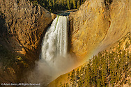 Lower Yellowstone Falls, Yellowstone National Park, Wyoming/Montana.