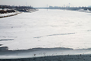 The partially frozen New Danube, seen from Reichsbrücke. A cormorant is trying to dry his wings.