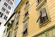 Torre Guinigi tower and window shutters in via Cesare Battisti in Lucca, Italy
