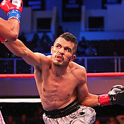 Miguel Vazquez fights for the IBF Lightweight title during the HBO Triple Explosion fight at the Turning Stone Resort Casino in Verona, NY, on Saturday, Oct 27, 2012. (AP Photo/Alex Menendez)