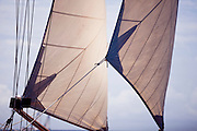 Mary Rose sailing in the Old Road Race at the 2011 Antigua Classic Yacht Regatta.