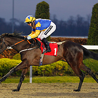 Kempton 6th March 2013