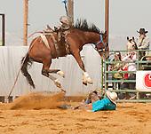 Bruneau Rodeo Round-Up