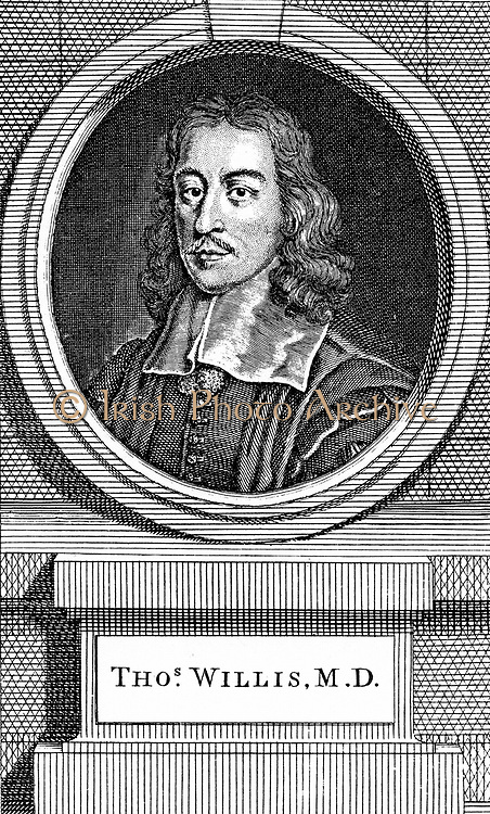 Thomas Willis (1621-75) English physician.  First in modern times to notice sweetish taste of diabetic urine in diabetes mellitus.  Studied brain and nervous system. One of founders of the Royal Society.    Hand-coloured engraving  by George Vertue published 1742.
