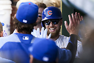 August 17, 2017 - Chicago, IL, USA - The Chicago Cubs' Ben Zobrist celebrates having scored on a sacrifice fly by Ian Happ during the seventh inning against the Cincinnati Reds at Wrigley Field in Chicago on Thursday, Aug. 17, 2017. The Reds won, 13-10. (Credit Image: © Armando L. Sanchez/TNS via ZUMA Wire)
