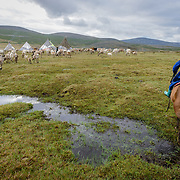 Entering a settlement of Dukha (Tsaatan) reindeer herders on horseback. Approximately 200 families comprise the Tsaatan or Dukha community in northwestern Mongolia, whose existence is intimately linked to their herds of reindeer. Photo © Robert van Sluis