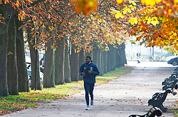 ©Licensed to London News Pictures 31/10/2019.<br /> Greenwich,UK. A cold autumnal October afternoon in Greenwich Park, Greenwich, London. Photo credit: Grant Falvey/LNP