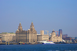 Liverpool, England - Sunday, June 10, 2007: The Liverpool skyline featuring the Liver Buildings. (Pic by David Rawcliffe/Propaganda)
