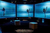 Programmee par le musee des Confluences en resonnance avec la Biennale de la danse, Corps rebelles est une exposition sur l&rsquo;histoire de la danse au 20e siecle.<br /> Destinee aux neophytes comme aux inities, elle interroge ses enjeux esthetiques et sociaux et presente les differentes approches du corps dansant, illustres par des choregraphies emblematiques.<br /> Six grands themes en dessinent le parcours : &quot;Danse virtuose&quot;, &quot;Danse vulnerable&quot;, &quot;Danse savante, danse populaire&quot;, &quot;Danse politique&quot;, &quot;Danses d&rsquo;ailleurs&quot;, et &quot;Lyon, une terre de danses&quot;.<br /> L&rsquo;exposition se visite avec un casque afin de decouvrir en synchronisation les extraits de danse et leur musique.