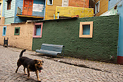 A dog goes through Caminito street, in La Boca neighborhood of Buenos Aires, Argentina.<br /> Caminito is a pedestrian street created in the late 1950s by local painter Benito Quinquela Martín and other artist friends to recreate a version of the old immigrant neighborhood of La Boca, using wood and corrugated zinc painted in bright colors. Today, Caminito and the surrounding areas feature cafes, souvenir shops, tango dancers and other street performances aimed to attract tourists.