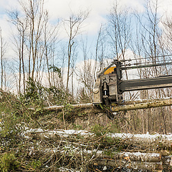 A delimber in action in a log yard in Big Six Township, Maine.