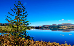 Autumn sunshine on Clatteringshaws Loch in the Galloway Forest Park, Dumfries &amp; Galloway, Scotland<br /> <br /> (c) Andrew Wilson | Edinburgh Elite media